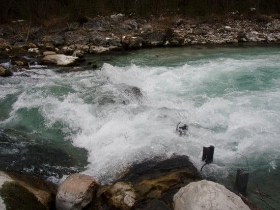 Kajakgyilkos vasak a vízben.