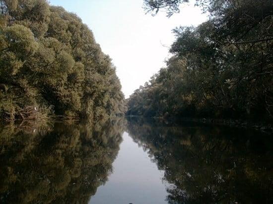 A hídtól párszáz méterre beérsz egy hosszabb, nagyjából egyenes szakaszra (ez van a képen). A folyó felett átívelő villanyvezeték előtt 100 m-re kis víznél húzódj be a bal part mellé, a fák alá, különben fennakadsz.