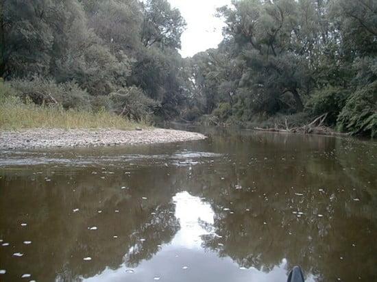 A híd alatt kb. 400 m-re villanybezeték a folyó felett. Utána van egy kanyar, és ezután lesz egy sziget, aminek a bal ágában nagyon ritkán van csak víz. A baé part mellett valamilyen víz befolyik egy csőből. Nem tudom mi, de feltűnően habos ahhoz, hogy esővíz elvezető csatorna legyen... A sziget jobb oldalán lehet elhaladni.