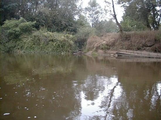 Molnaszecsődtől kb. 2 km-re Egyházashollós vonalában vagyunk. A képen a Mukucs-patak torkolata látható a fahíddal.