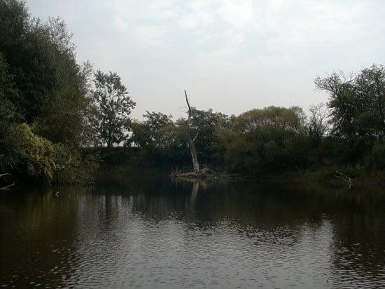 Ez az elszáradt fa a balos kanyar külső ívén azért fontos, mert az ez után következő kanyar a bal széle kivételéve tele van nagy kövekkel.