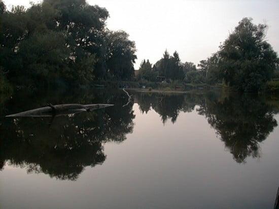 Megyeskovácsi településsel egyvonalban lévő horgásztanyák a folyó mindkét oldalán. 104 fkm