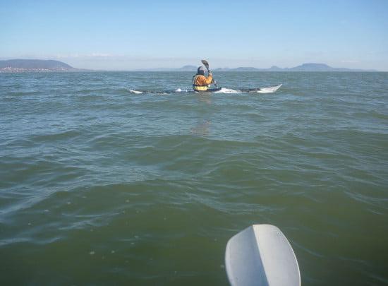 Ennyi lett az ígért nagy viharos szélből. 20 cm hullámnál nagyobbat mi nem láttunk semerre.