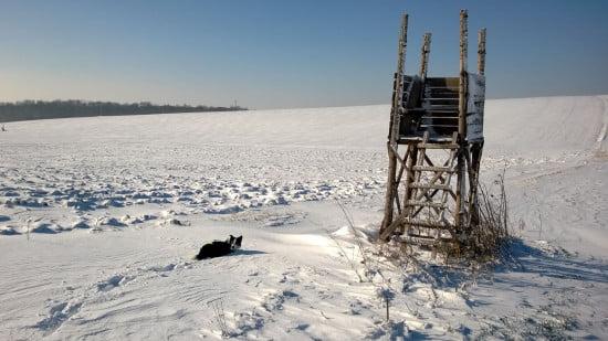 A hófúvásnak köszönhetően néhol fél méteres is volt a hó, néhol csak pár centiméter.
