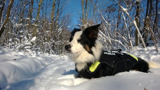 Pózer Léna. Profi modell, különösen nem zavarja, hogy kb. 2 perce csúsztam bele egy hó által takart pocsojába.