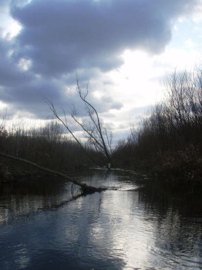 Határozottan szép szakasz a csatornán. Ilyen volt jellegre gyerekkoromban, amikor még gondozták a partjait.