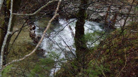 Az útról készül képen látható a beékelődött fa.