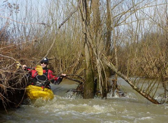 A kis patakon gyorsan kell reagálni a sok fa miatt.