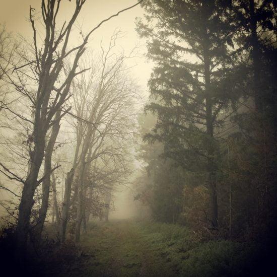 rigy_kist-varfolde_oltarc_01