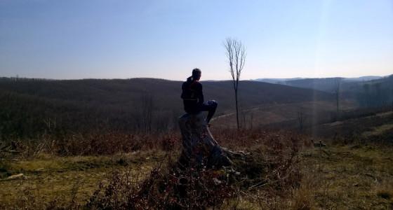 Még ötvenezer lépés, 80 km-es terepkocogás Zala megye dombjain