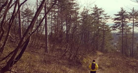 Böjti szelek – Lepke 40 túra