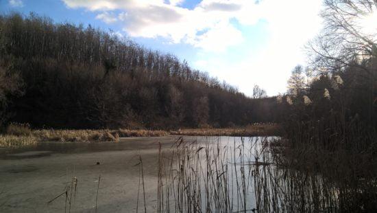 A felduzzasztott Bükk alja patak.