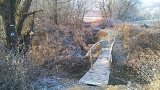 Kis híd a patak felett.