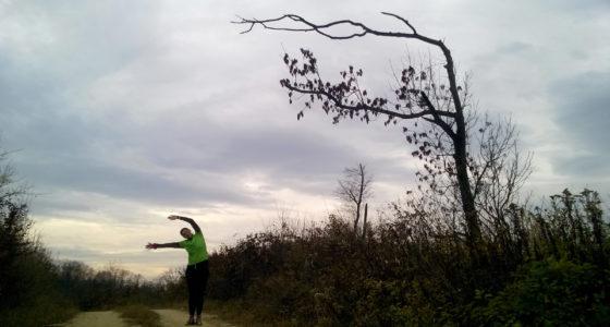 Dél Zala Dombjai Ultra Trail 300 – 10. szakasz (Kistolmács – Nagykanizsa)