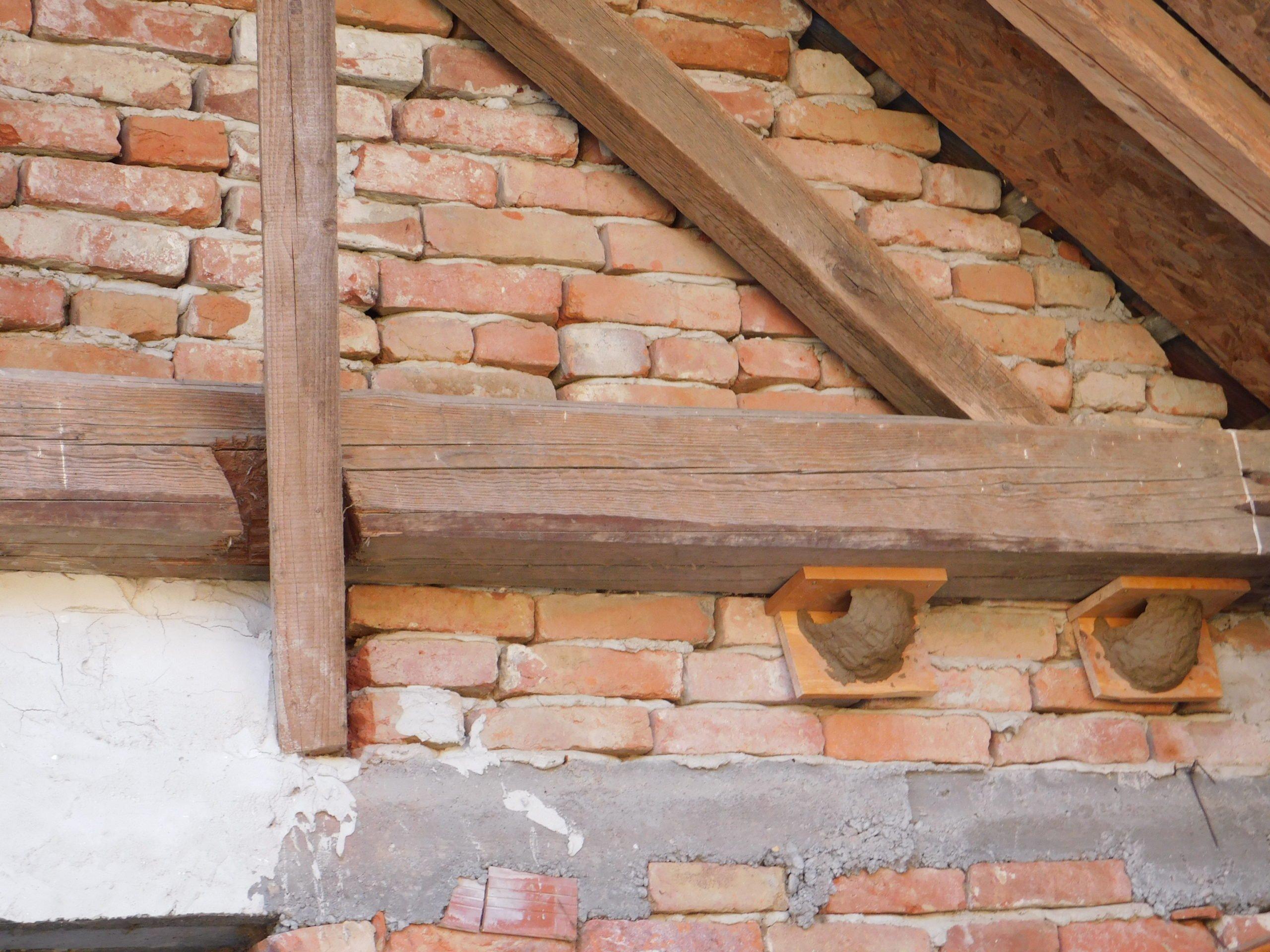 Fecskefészek építés házilag